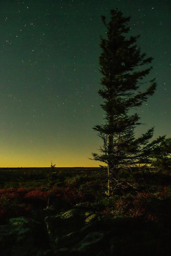 Moonlit Photograph