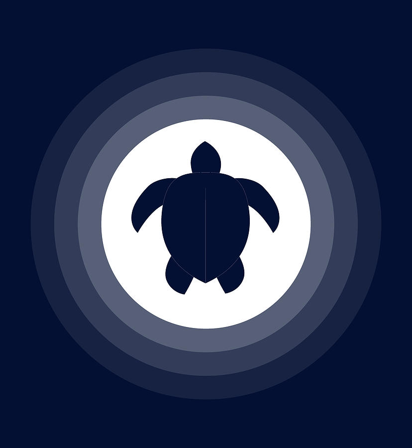 Moonlit Turtle Digital Art