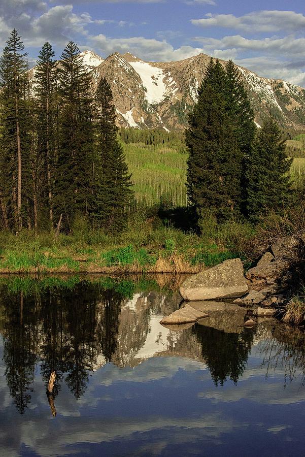 Moose  Pond Photograph