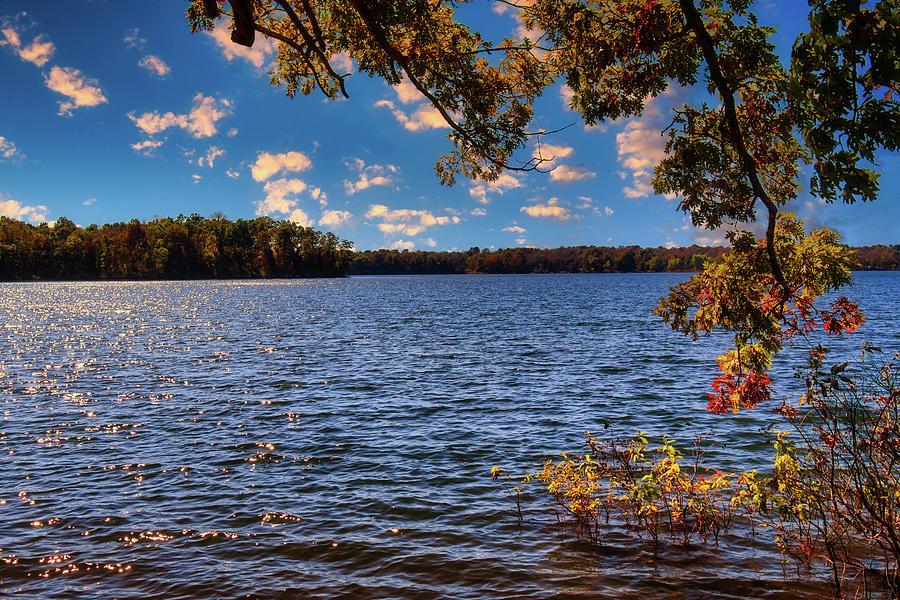 Morning at Fellow's Lake by Allin Sorenson