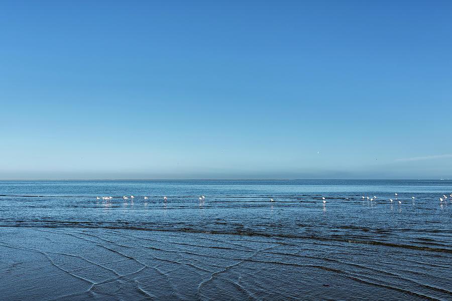 Morning at Walvis Bay by Belinda Greb
