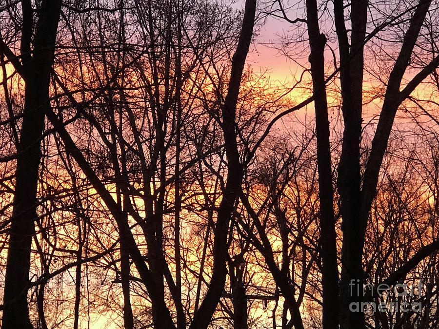 Sunrise Photograph - Winter Flaming Sunrise 2 by J Hale Turner