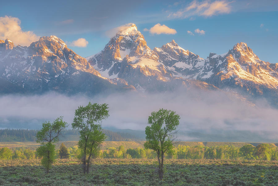 Morning Fog In The Tetons Photograph