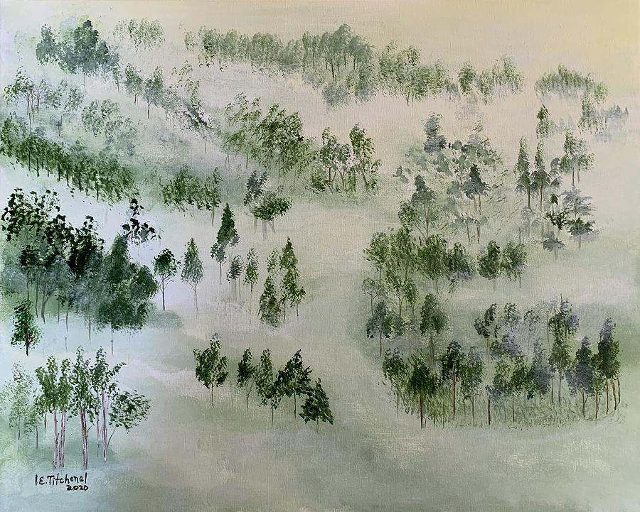 Morning Fog Photograph by Inez Ellen Titchenal