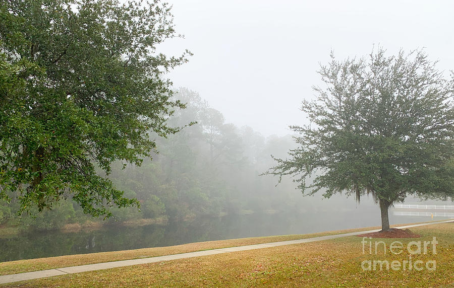 Morning Lake Fog - Rivertowne On The Wando Photograph