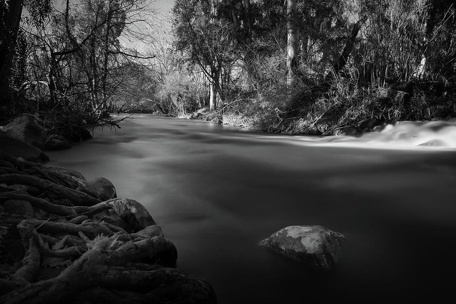 Morning Light At Snir River Photograph