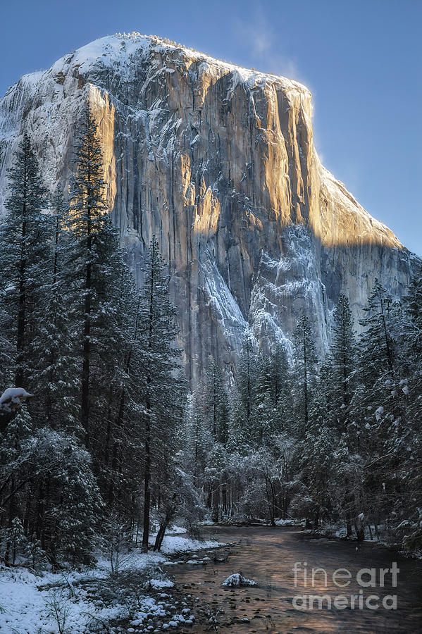 Morning Light, El Capitan by Anthony Michael Bonafede