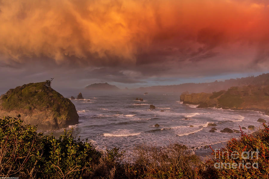 Morning On The Lost Coast Photograph