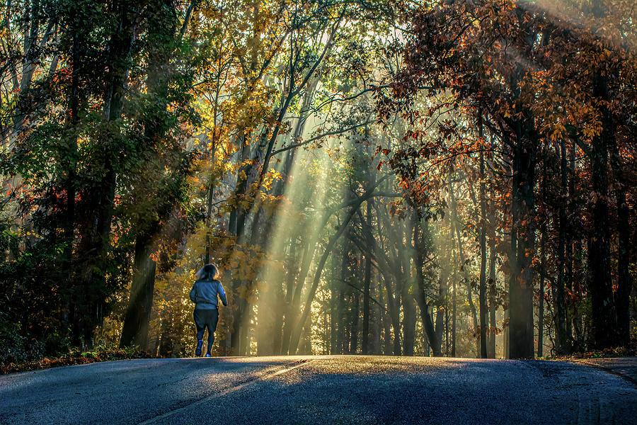 Morning Running Reverie by Douglas Wielfaert