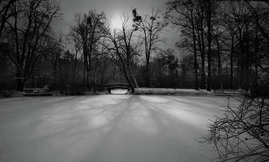 Morning Sun And Shadows On Snow Covered Pond Photograph
