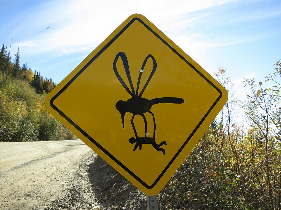 Mosquito Sign Photograph by Mlharing