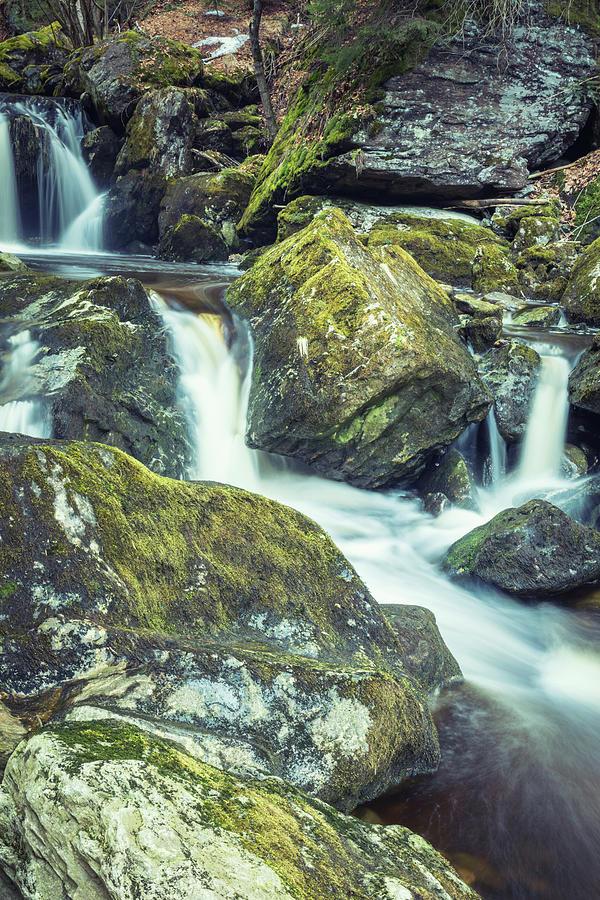 Mossy Rocks Photograph