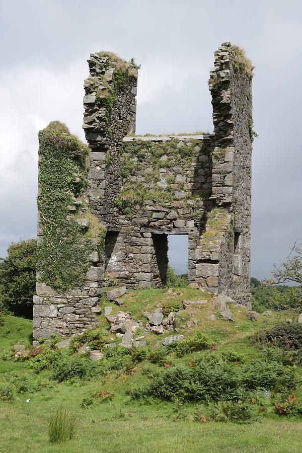 Mossy Ruin Photograph
