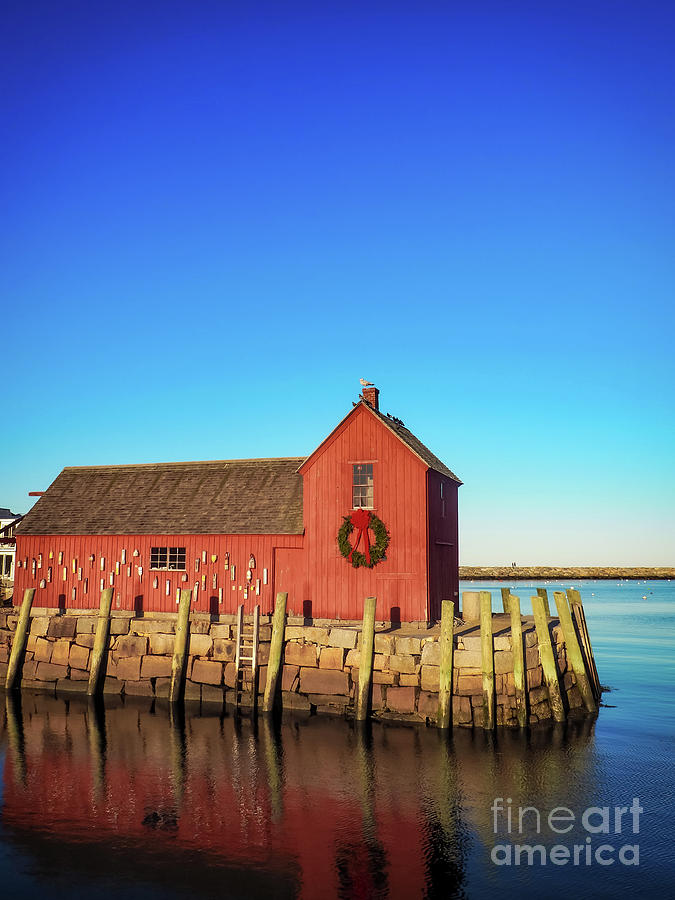 Motif Number One Reflecting by Mary Capriole