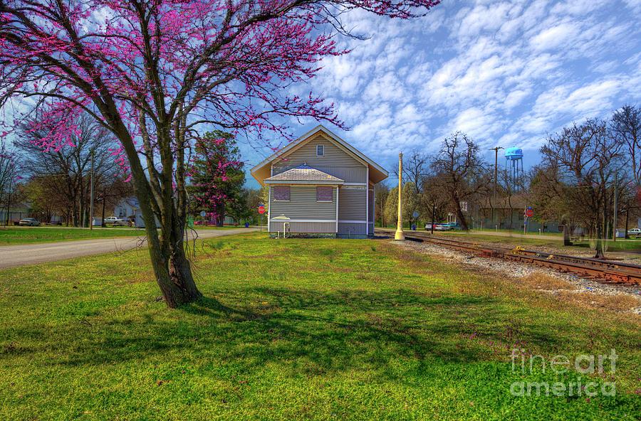 Travel Photograph - Mounds City Illinois Central Depot  by Larry Braun