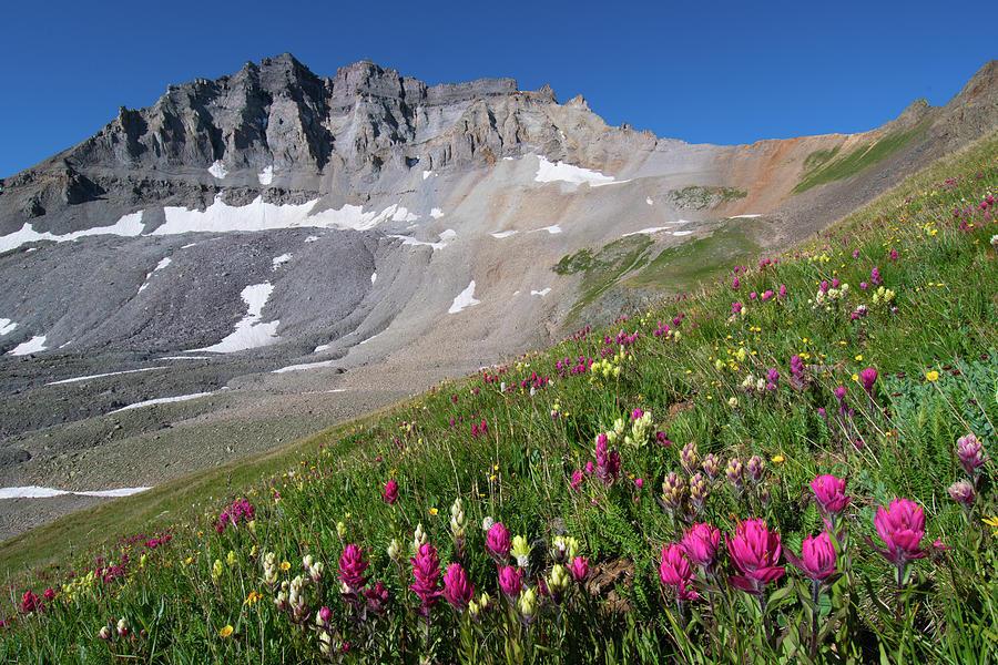 Mount Gilpin Summer Landscape Photograph