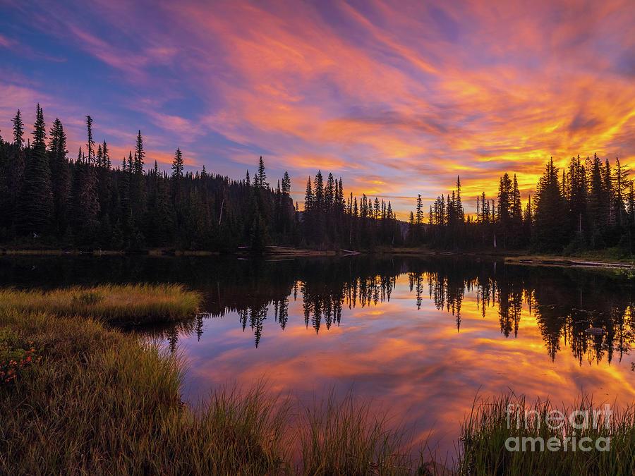 Mount Rainier National Park Sunrise Warmth Photograph