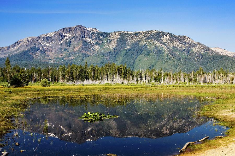 Mount Tallac Reflection Photograph