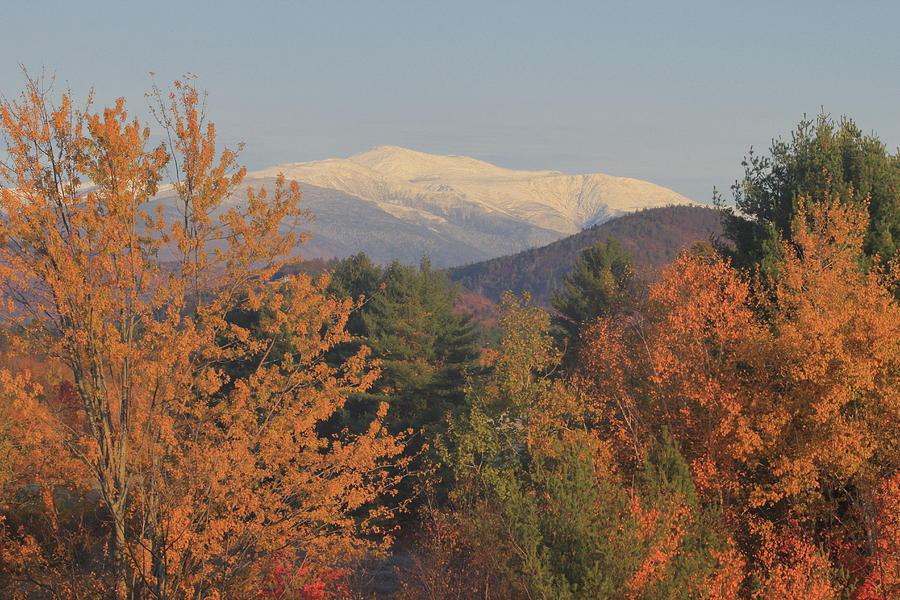 Mount Washington Valley Snow Foliage Photograph
