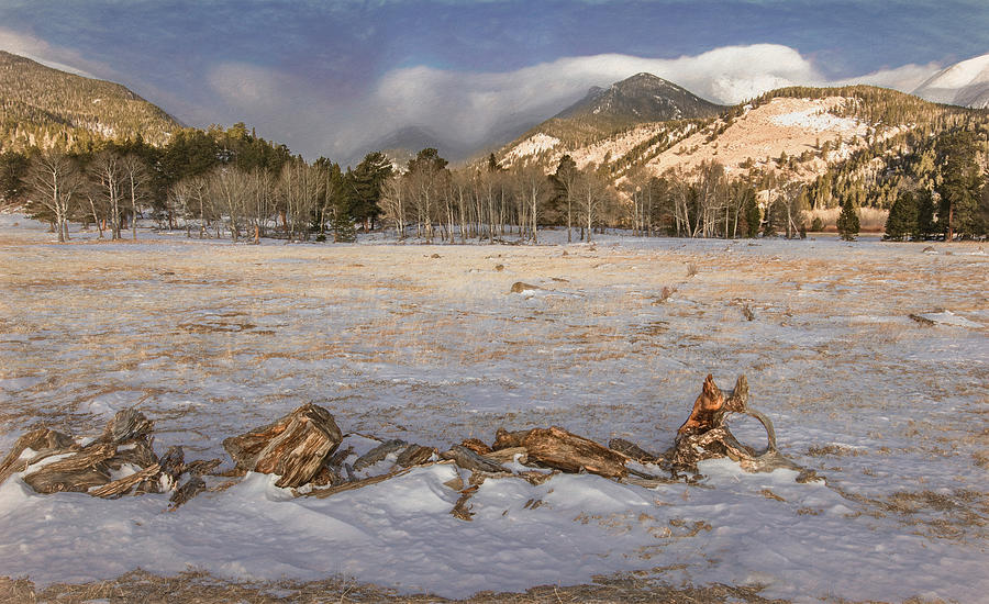 Mountain Meadow on a Cold, Winter Morning by Marcy Wielfaert