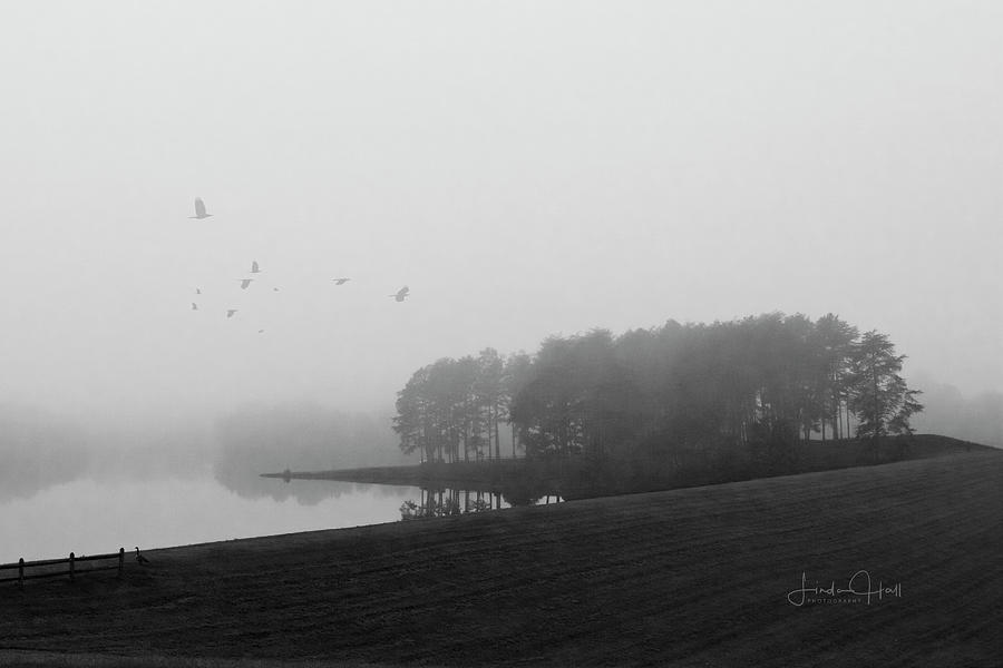 Black And White Photograph - Mountain Run Lake by Linda Lee Hall