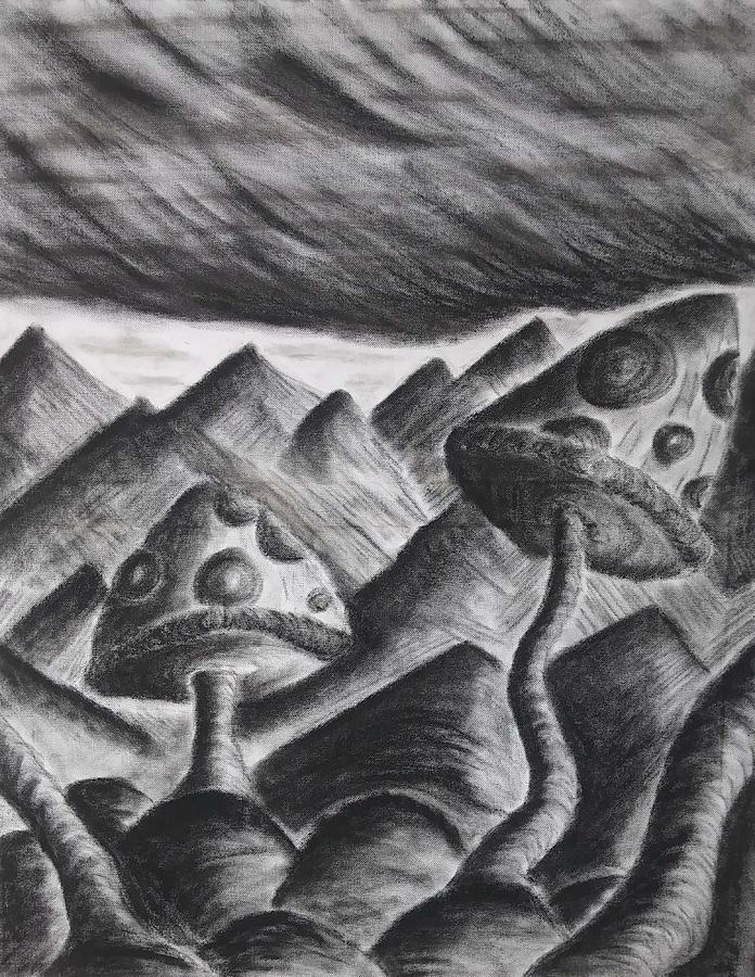 Mountain Shrooms by Aaron Bombalicki