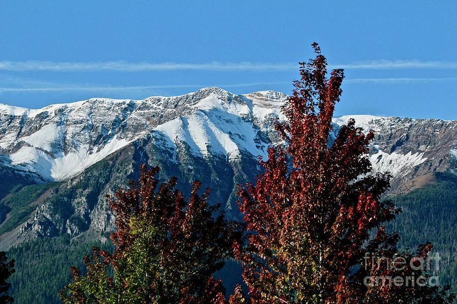 Mountain Splendor by Ann E Robson