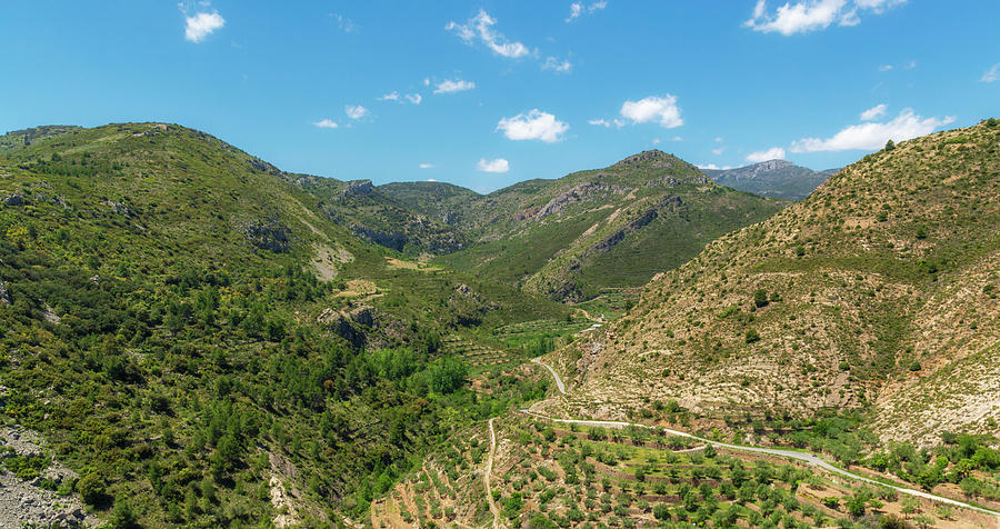Pine Photograph - Mountains Around Bejis In Castellon by Vicen Photography