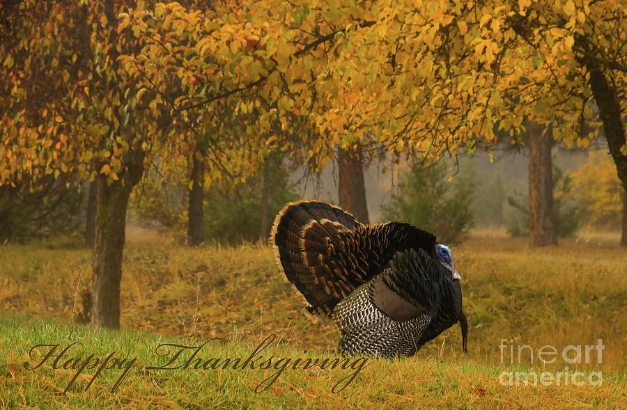 Mr. T Happy Thanksgiving Photograph