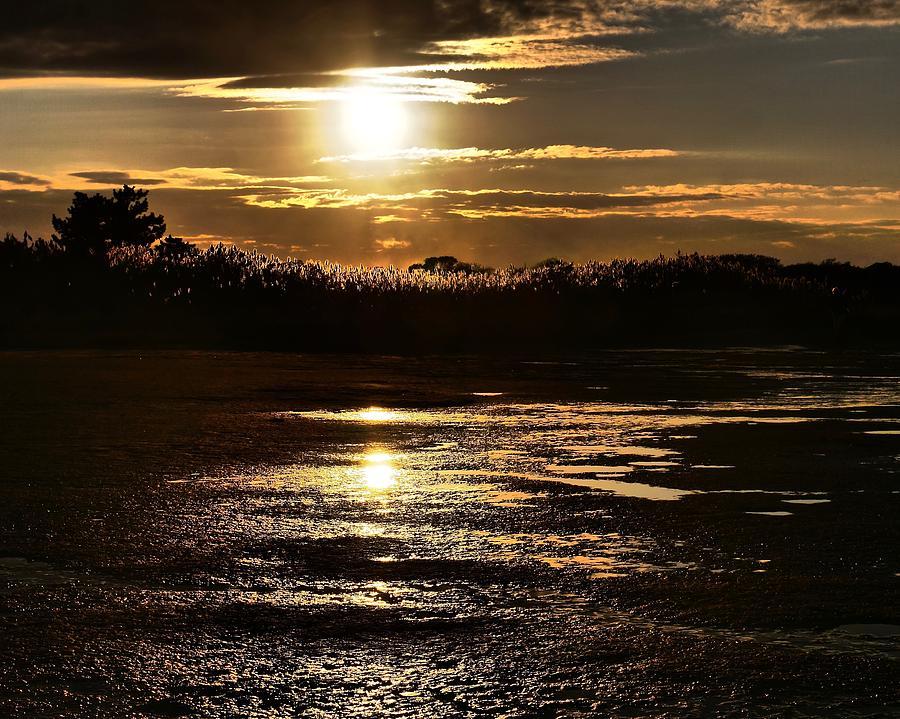 Mud Flats Sunset by JACK RIORDAN