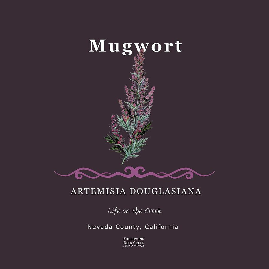 Mugwort Herb by Lisa Redfern