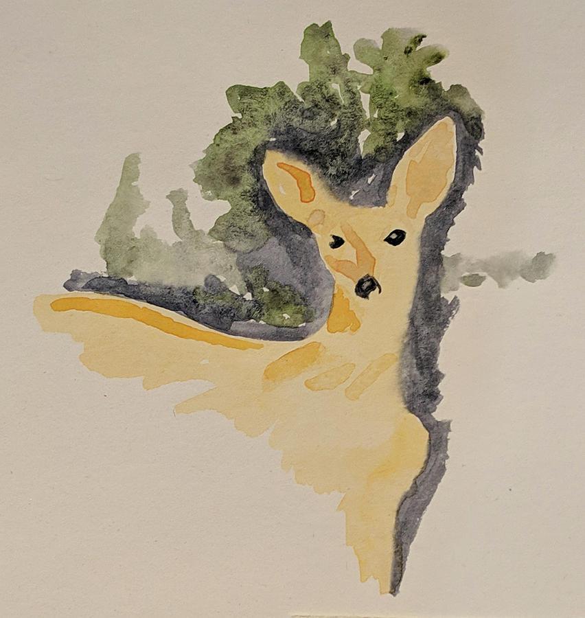 Deer Painting - Mule Deer- Odocoileus hemionus by Carly Creley