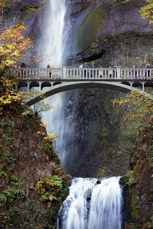 Multnomah Falls Autumn Close Up by Rospotte Photography