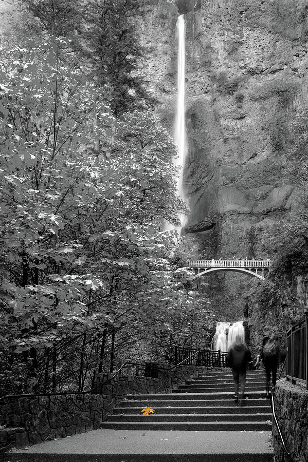 Multnomah Falls Memories 120719 by Rospotte Photography