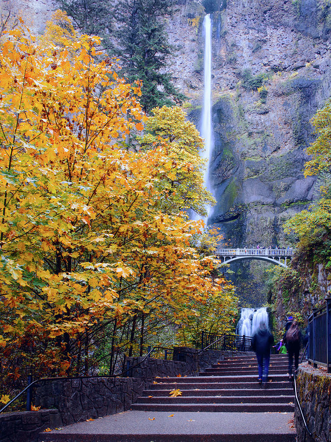 Multnomah Falls Oregon Autumn Leaves  by Rospotte Photography