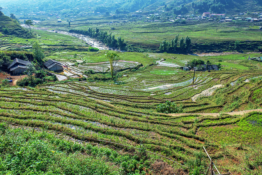 Muong Hoa Valley, Sapa, Northern Vietnam by Dubi Roman