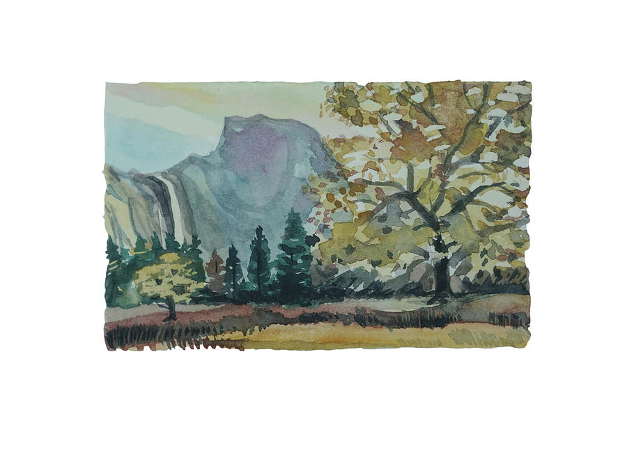 My Favourte Tree Painting