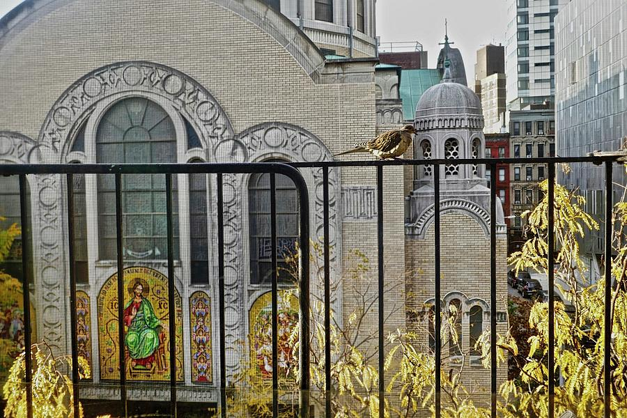 East Village Photograph - My Window View by Joan Reese