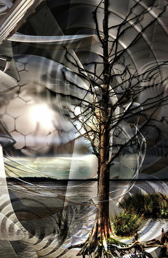 Mystification by Michele Caporaso