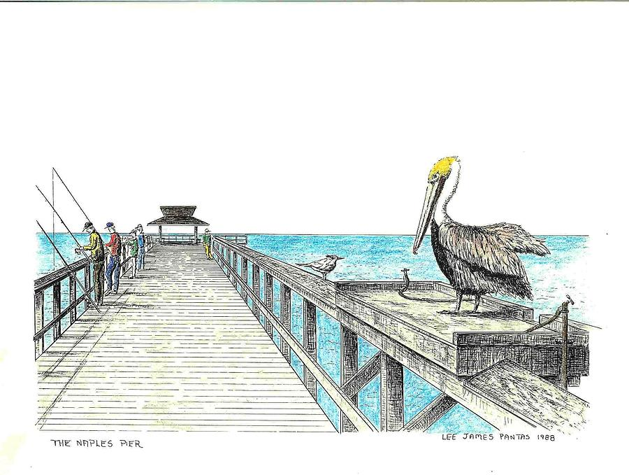 Naples Pier Drawing - Naples Pier with Pelican by Lee Pantas