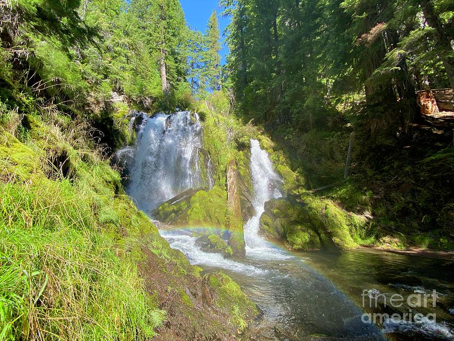 National Creek Falls Photograph