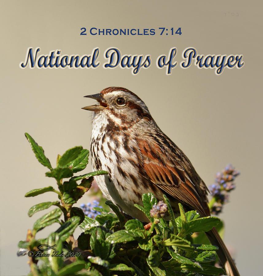 National Days Of Prayer Photograph