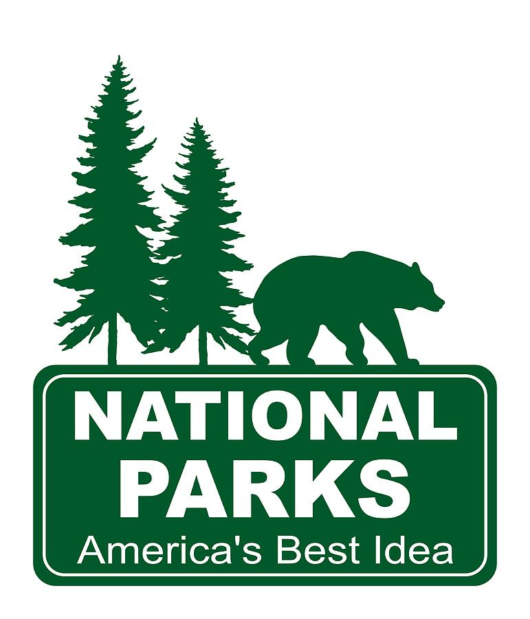 National Parks Bear by WiseWild57