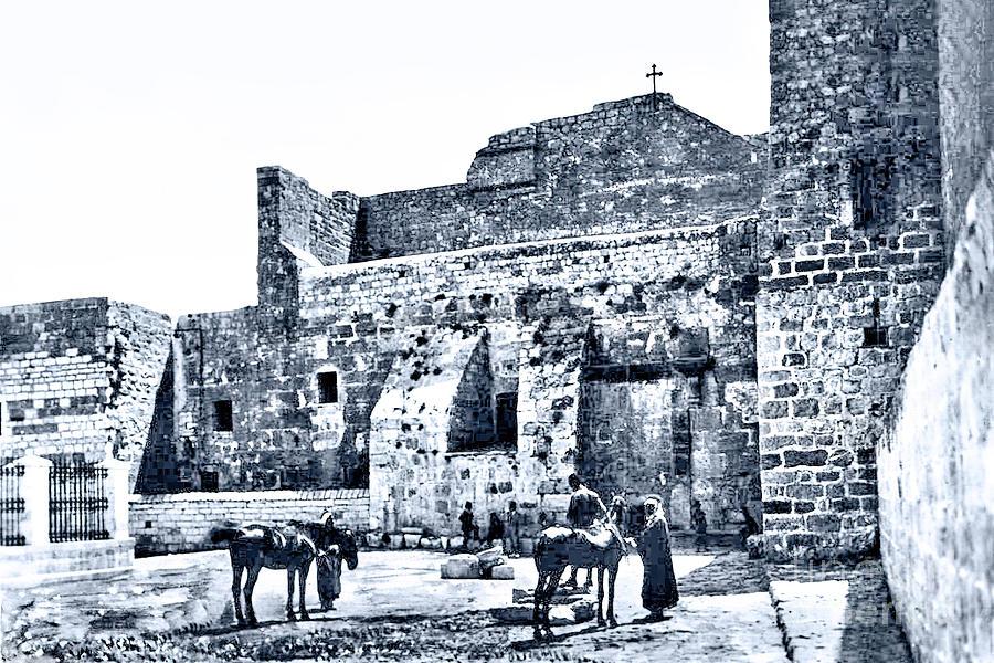 Nativity Church Wells And Horses Photograph