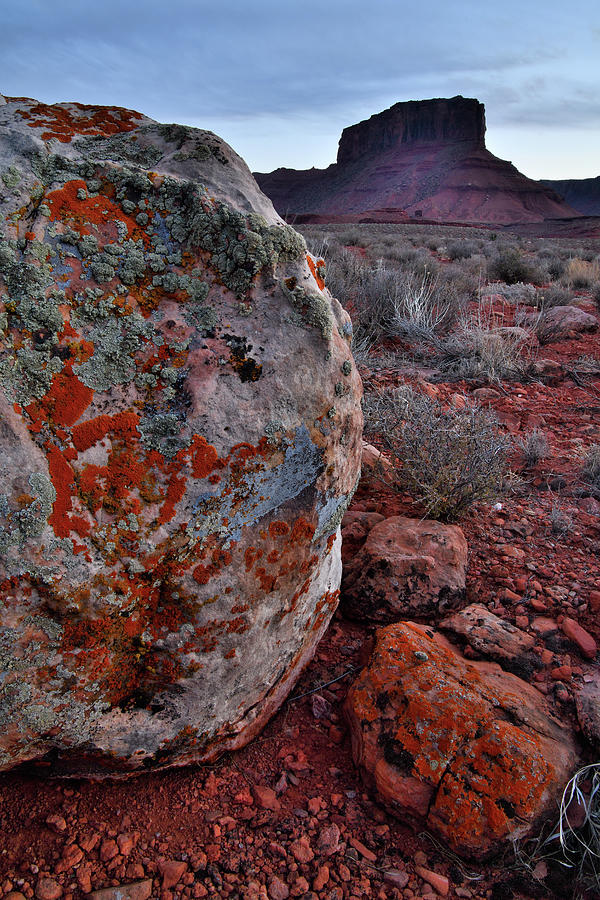 Natural Artwork In Castle Valley Photograph