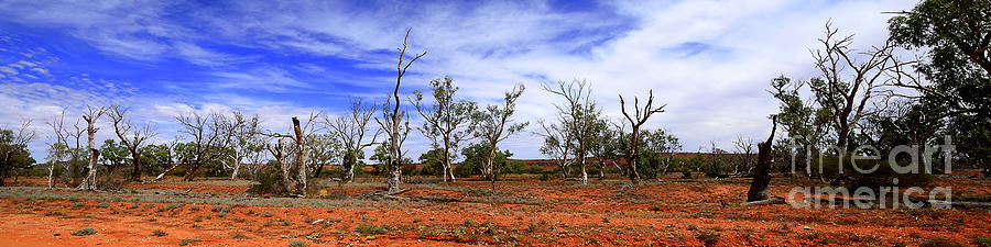 Natural Australian Desert Panorama By Kaye Menner Photograph