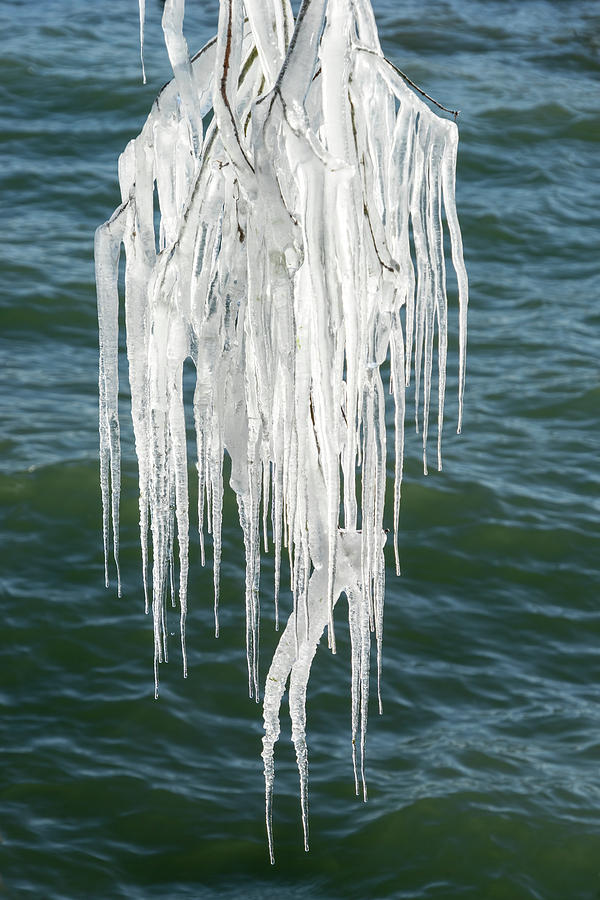 Natural Crystal Chandelier - Mother Natures Fantabulous Ice Sculpture by Georgia Mizuleva