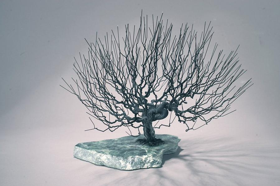 Nature Sculpture - Natural Tree Wire Sculpture by Mark Golomb