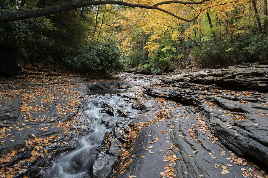 Natural Water Slide Photograph