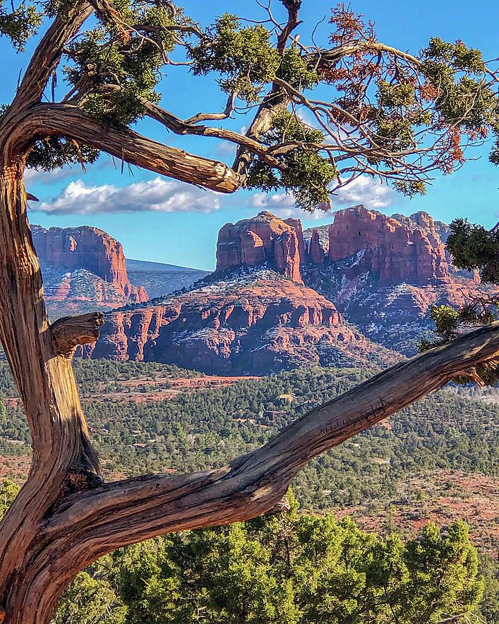 Naturally Framed - Cathedral Rock Sedona, Arizona by Teresa Wilson